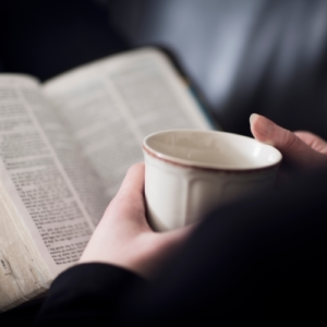 Reading And Interpreting The Bible – A New Adult Formation Class